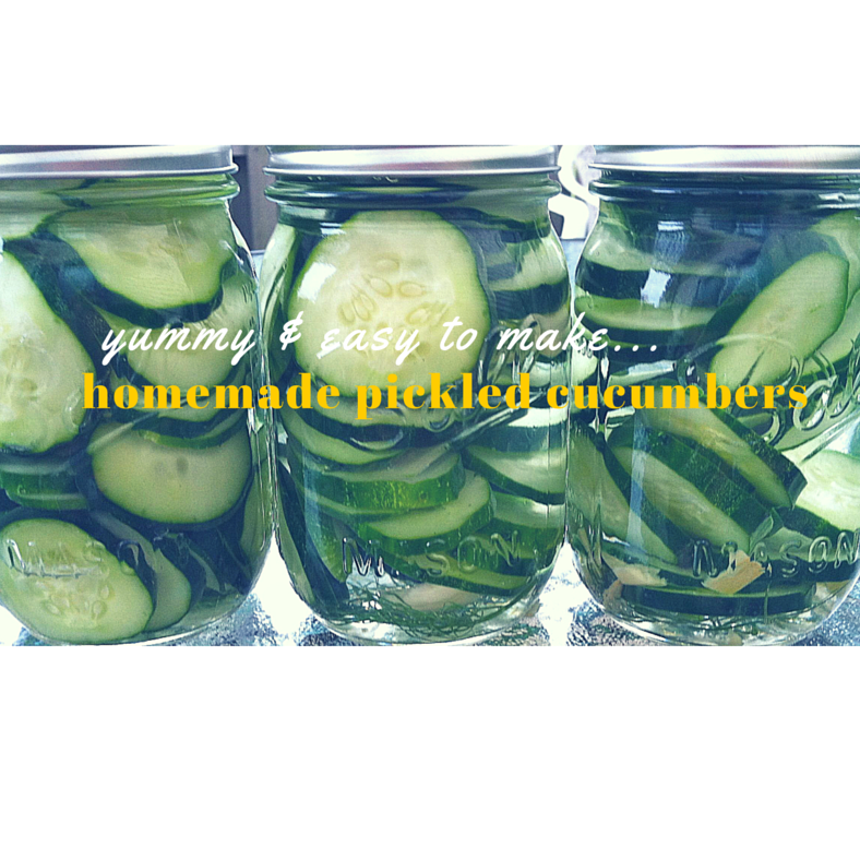 blog-image_cucumbers